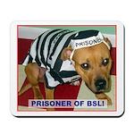 Prisoner Of BSL Mousepad
