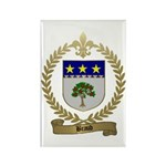 BRAUD Family Crest Rectangle Magnet (100 pack)