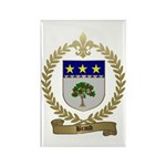 BRAUD Family Crest Rectangle Magnet (10 pack)