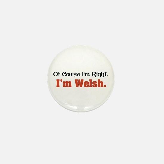 I'm Welsh Mini Button