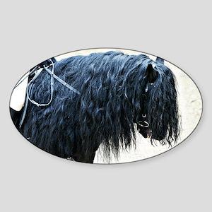 Fell Pony Oval Sticker