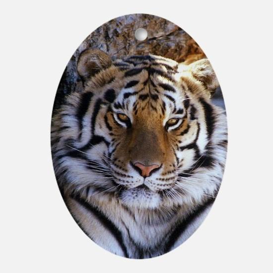 Tiger Oval Ornament