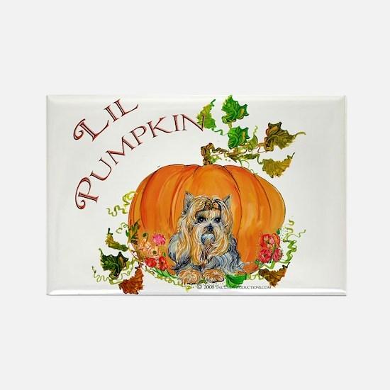 Pumpkin Yorkshire Terrier Rectangle Magnet
