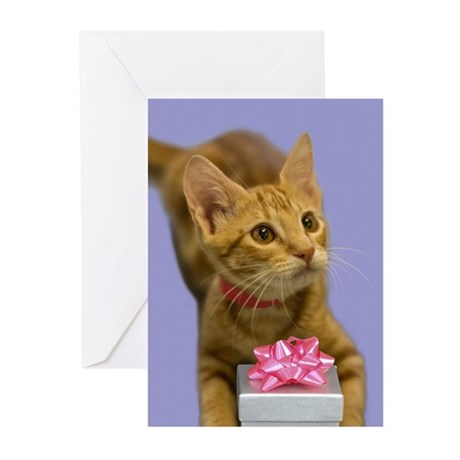Tabby Kitten with Gift Birthday Greeting Cards