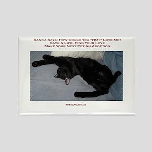 Adopt a Pet #1 Rectangle Magnet