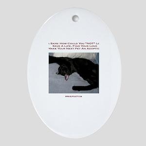 Adopt a Pet #1 Oval Ornament