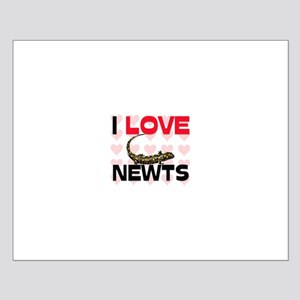 I Love Newts Small Poster
