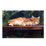 201-Cat Charlie Postcards (Package of 8)