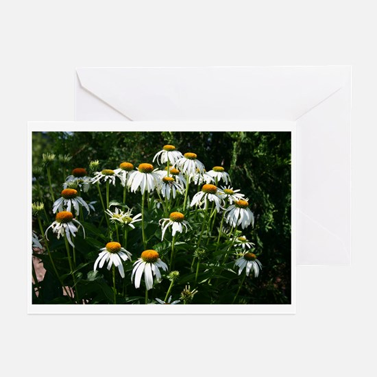 Flower photo art gift Greeting Cards (Pk of 10