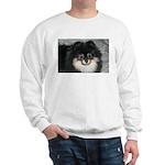 Sweatshirt/genser