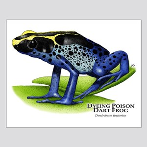 Dyeing Poison Dart Frog Small Poster