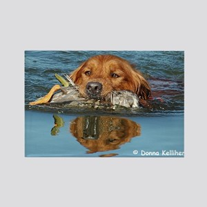 Swimming Golden with Reflection Rectangle Magnet