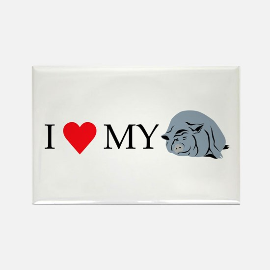 I Love My Pot Bellied Pig 2 Rectangle Magnet
