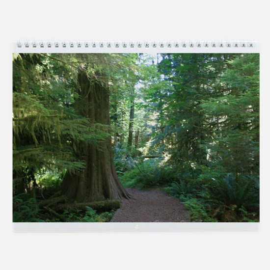 Cathedral Grove Wall Calendar
