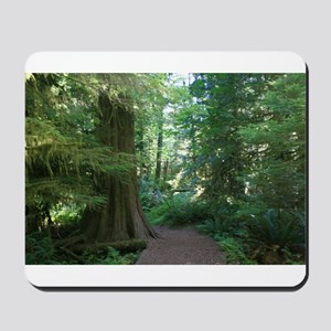 Cathedral Grove Mousepad