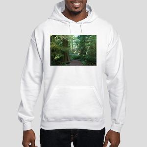 Cathedral Grove Hooded Sweatshirt