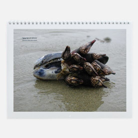 Sea Creatures Calendar