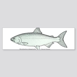 Chinook Salmon Bumper Sticker