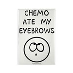 Chemo Ate My Eyebrows Rectangle Magnet (100 pack)