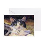 210 - Cat Aj Greeting Cards