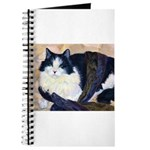 212- Cat Tillie Journal
