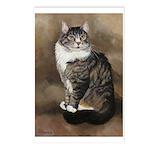 214 - Cat Rainier Postcards (package Of 8)