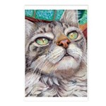 216 - Cat Veludo Postcards (package Of 8)