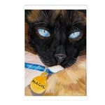 217 - Cat Magic Postcards (package Of 8)