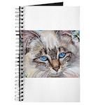 220 - Cat Sabrina Journal