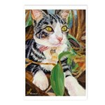 234 - Cat Victoria Little Postcards (package Of 8)