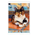 244 - Cat Jaxy Postcards (package Of 8)