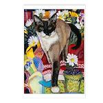 245 - Cat Francesca Postcards (package Of 8)