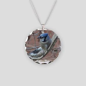 BlueJay Necklace