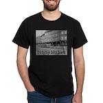 Hot Springs Dark T-Shirt