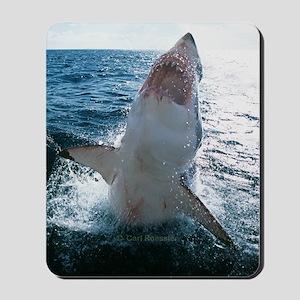 High Flying Shark Mousepad