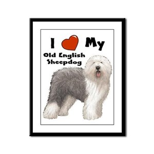 I Love My English Sheepdog Framed Panel Print