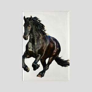 Black Stallion Horse Rectangle Magnet