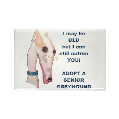 Greyhound Rectangle Magnet/Roo