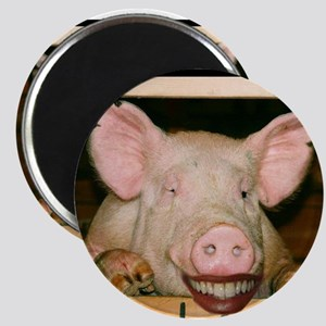 Lipstick on a Pig 2 Magnet