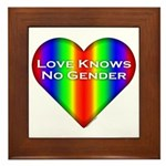 Love Knows No Gender Framed Tile