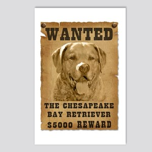 """Wanted"" Chesapeake Bay Retriever Postcards (Packa"
