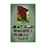 G.Michael Brown Mini Poster Print