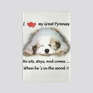 Great Pyrenees Mood Rectangle Magnet