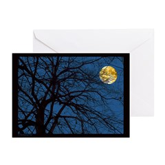 Mysterious Tree Branches Greeting Cards (Pk of 10)