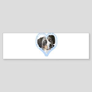 My Heart Belongs to a Catahou Bumper Sticker