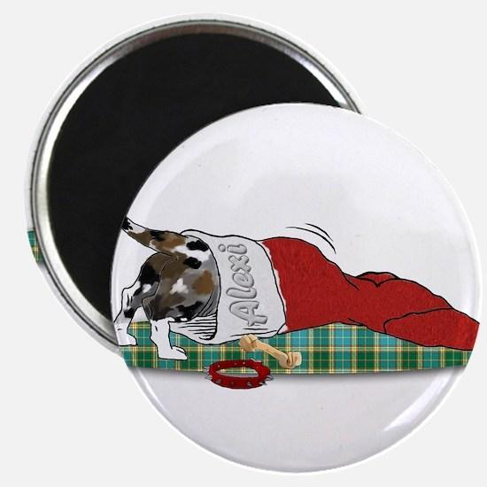 Catahoula Raiding Christmas S Magnet