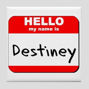 Hello my name is Destiney Tile Coaster