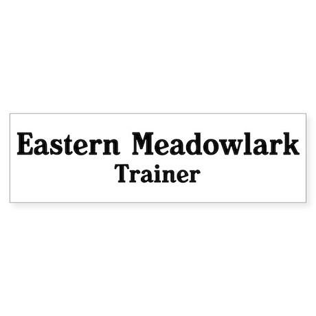Eastern Meadowlark trainer Bumper Sticker (10 pk)
