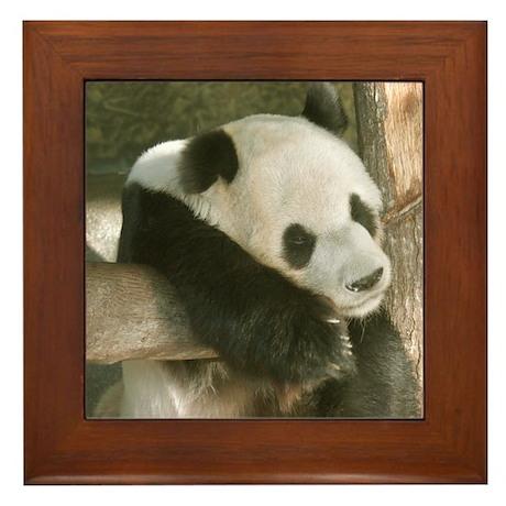 Panda Bear Framed Tile