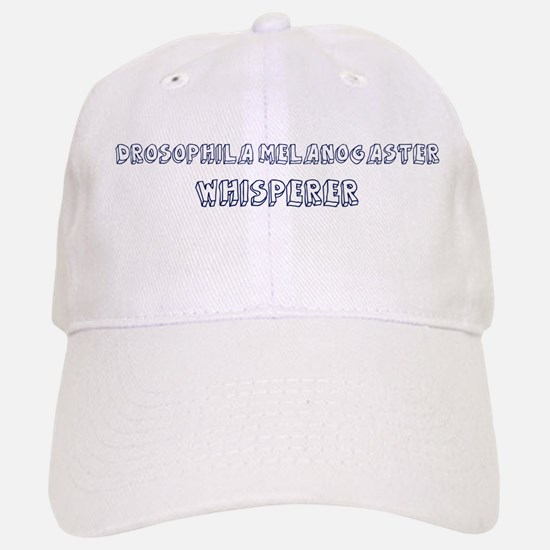 drosophila gifts merchandise drosophila gift ideas apparel  drosophila melanogaster whisp baseball baseball cap